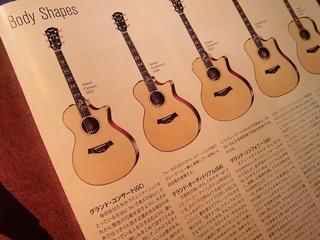 シェイプ(5種類)
